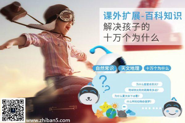 广州智伴机器人哪个团队好